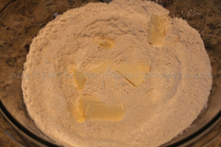Add the butter and mix well with a pastry blender or your fingertips.